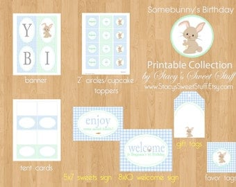 Bunny Birthday Party Package, Some bunny Printable Birthday Party, Bunny Birthday, DIY, Printable Birthday, CHOOSE 4