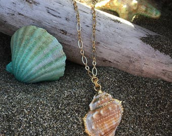 Classic Seashell Ocean Necklace mermaid beach gold edged bohemian boho gypsy womans jewelry
