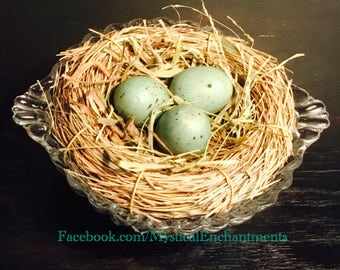 Vintage Glass Dessert cup with Bird nest and spotted eggs