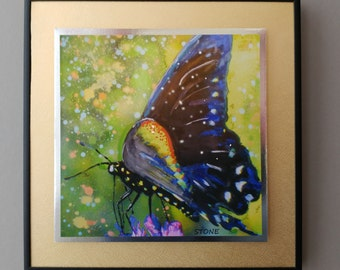 """Butterfly Explosion, 11"""" x 11"""", Framed, Ready to Hang"""