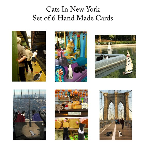 Cat Lover Gift New York City Cat Greeting Cards