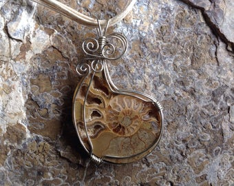 Ammonite necklace, wire wrapped pendant..
