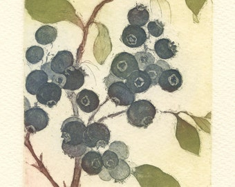 Blueberries, Original Fine Art Etching