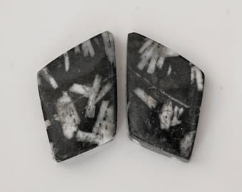 CHINESE WRITING ROCK (33719 ) * * * Matched Pair (2 Gems) Hard to Find! Cab/Cabochon
