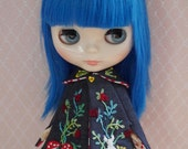 Embroidered Cape for Blythe.