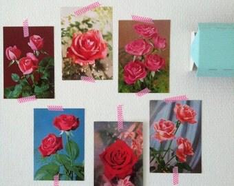 Vintage rozen ansichtkaarten