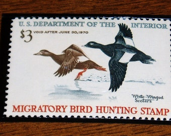 RW36, Federal Duck Stamp, 1969-71 Hunting Season