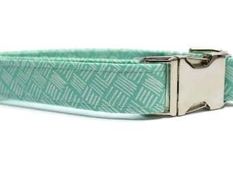 Dainty Mint Dog Collar | Your choice of metal buckle or plastic buckle | Mint Dog Collar | Girl Dog Collar | Boy Dog Collar
