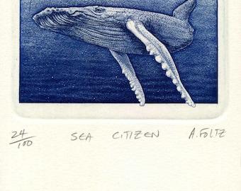 Sea Citizen