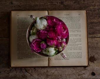 farmhouse decor, rustic flower art, ranunculus art print, floral nursery art, flower and book photo, tea cup art, romantic floral print,