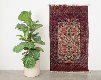 AFIZEH 3x5.5 Hand Knotted Rizbaft Wool Rug