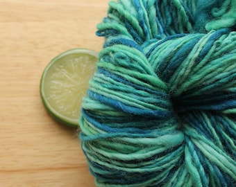 Jungle - Green Blue Wool Worsted Weight Handspun Yarn Hand Dyed