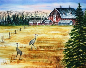Sandhill cranes going their own way