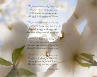 5x7 Print Dogwood in Spring / Robert Frost Poem A Prayer In Spring