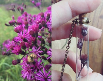 TORCH a dried wildflower ironweed specimen glass vial necklace
