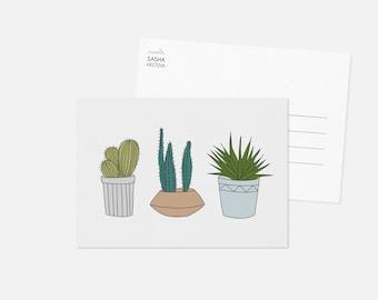 CACTUS II postcard / cacti illustration