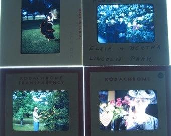 Vintage Photographic Grab Bag Box of Photo Slides // Red Border Slides // Flowers, Landscape, People //