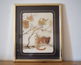 Mads Stage Dormouse Illustration - Watercolour Nature Study