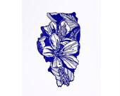 Letterpress Illinois Purple Violet