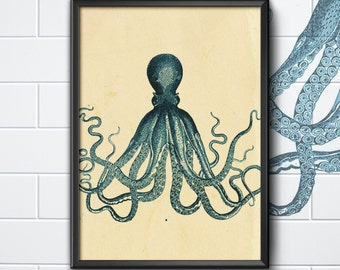 Octopus etching, print ideal for fish restaurant, kitchen, funky, interior picture, vintage style.