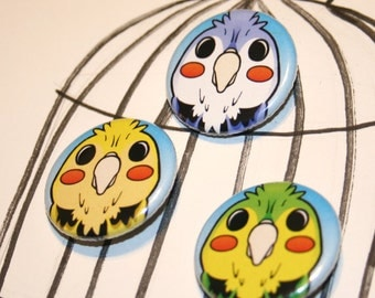 Set of 3 Budgie Parakeet Pin Back Buttons or Magnets