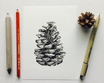 Detailed 5x7 Original Ink Pen Pine Cone Drawing Black and White Modern