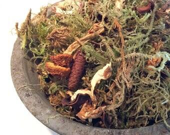 MOSS & MUSHROOM POTPOURRI- Mossy scented potpourri - Cedar wood - Sweetgrass - Sage - Fresh Dirt - Earthy - boho hippie scent