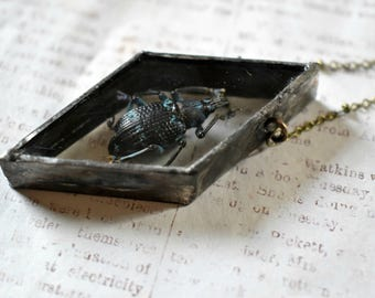 Beetle Necklace Shadow Box Necklace Insect Jewelry Black and Blue Beetle Pendant Soldered Pendant Macabre Jewelry Terrarium Jewelry Unique