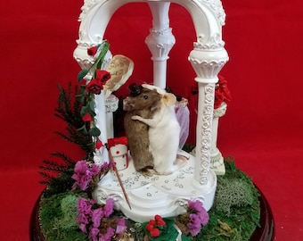 Taxidermy Wedding Mouse/mice Chapel/Cake topper or Display//Proposal-Bride/Groom