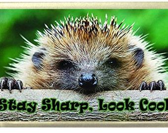 Stay cool, look sharp, Hedgehog Fridge Magnet 7cm by 4.5cm,
