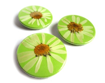 38mm pin with dried marguerite, handmade, 1 pc.