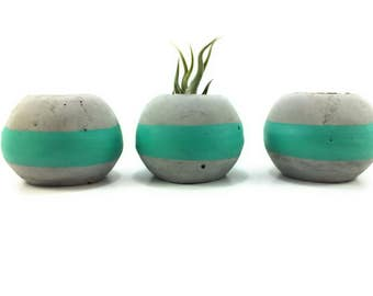 ORB Concrete Succulent Planters/Air Planters. (Set of 3) Sea Glass Turquoise.   FREE SHIPPING! Ready To Ship!