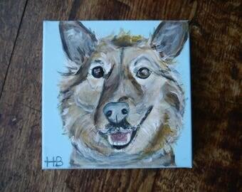 Commission your own custom pop art pet portrait, pet portrait, canvas pet portrait - 20 x 20cm from a photo - pet art