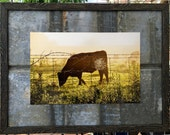 """Spiderweb and Cow on a foggy morning print on reclsimed barn tin/framed 18""""x24"""""""