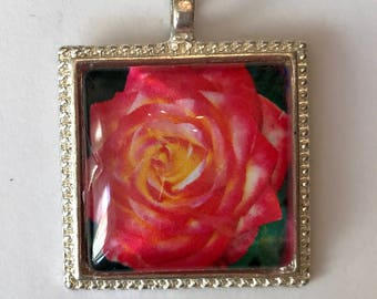 Pendant: Hot Pink Rose Photo