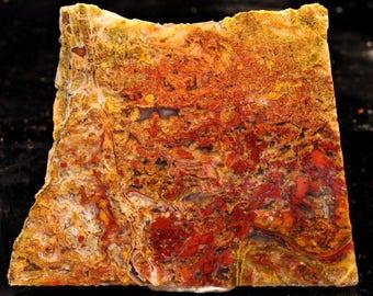 Beautiful Bloody Basin Plume Agate Slab