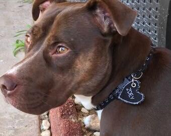 Personalized Dog Collar, Dog Collar