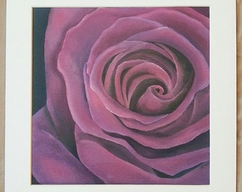 Purple Rose - Art Print 20X20cm