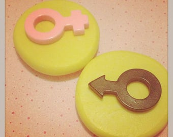 Boy /Girl Male/Female Sign Mold Silicone