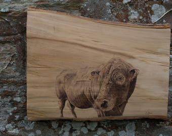 "Handcrafted original pyrography cow ""Harvey"""