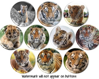 Bengal Tiger Pins, Tiger Buttons, Big Cat Rescue, Tiger Pinback or Magnets, Tiger Birthday Party Favors, Endangered Species Magnets - BB2442