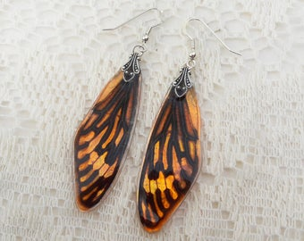 Cicada Earrings - Wing Jewelry - Fairy Wings - Entomology Gift - Resin Jewelry - Insect Earrings - Resin Cicada Wings - Hibiscus Sunset