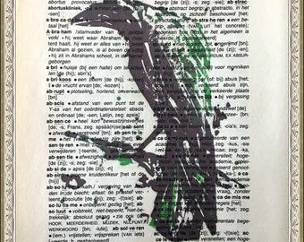 Crow Original Print on 1950s antique page