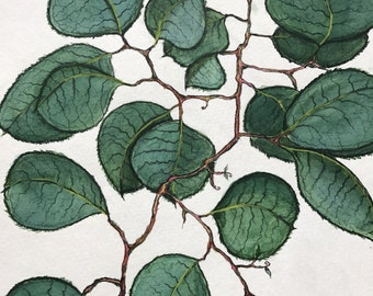 Leaves in Watercolor by Johnny Marie