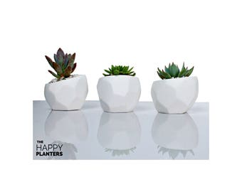 Geometric Planter, Cactus Planter Gifts, Geometrical Planter, pot succulent modern, Minimal Planter, tabletop planter, desk plant pot