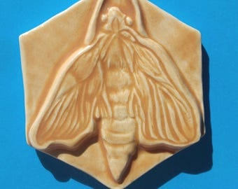 Ceramic Moth Tile in Peach