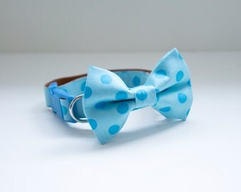 Bow Tie Collar | Blue Dots Bow Tie | Dog & Cat