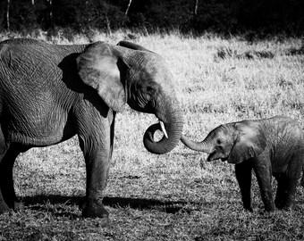 Elephant baby print,Safari animal print,Nursery decor,Animal decor,elephant family,Animal wall art,African Wildlife,Wildlife print
