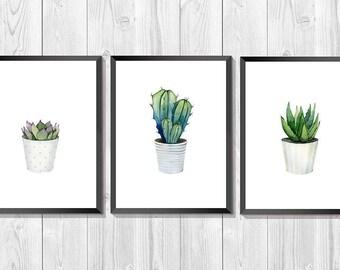 Cacti set. Succulent watercolor. Set of 3 prints. Plant Print. South Western art. Kitchen Decor. Botanical Set. Scandinavian Wall Art