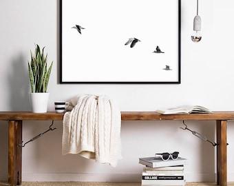 Minimalist Art Seagull Print Bird Print Bird Photo Seagull Wall Art Fineartprint Bird Photography Minimalist Photography Minimal Photography